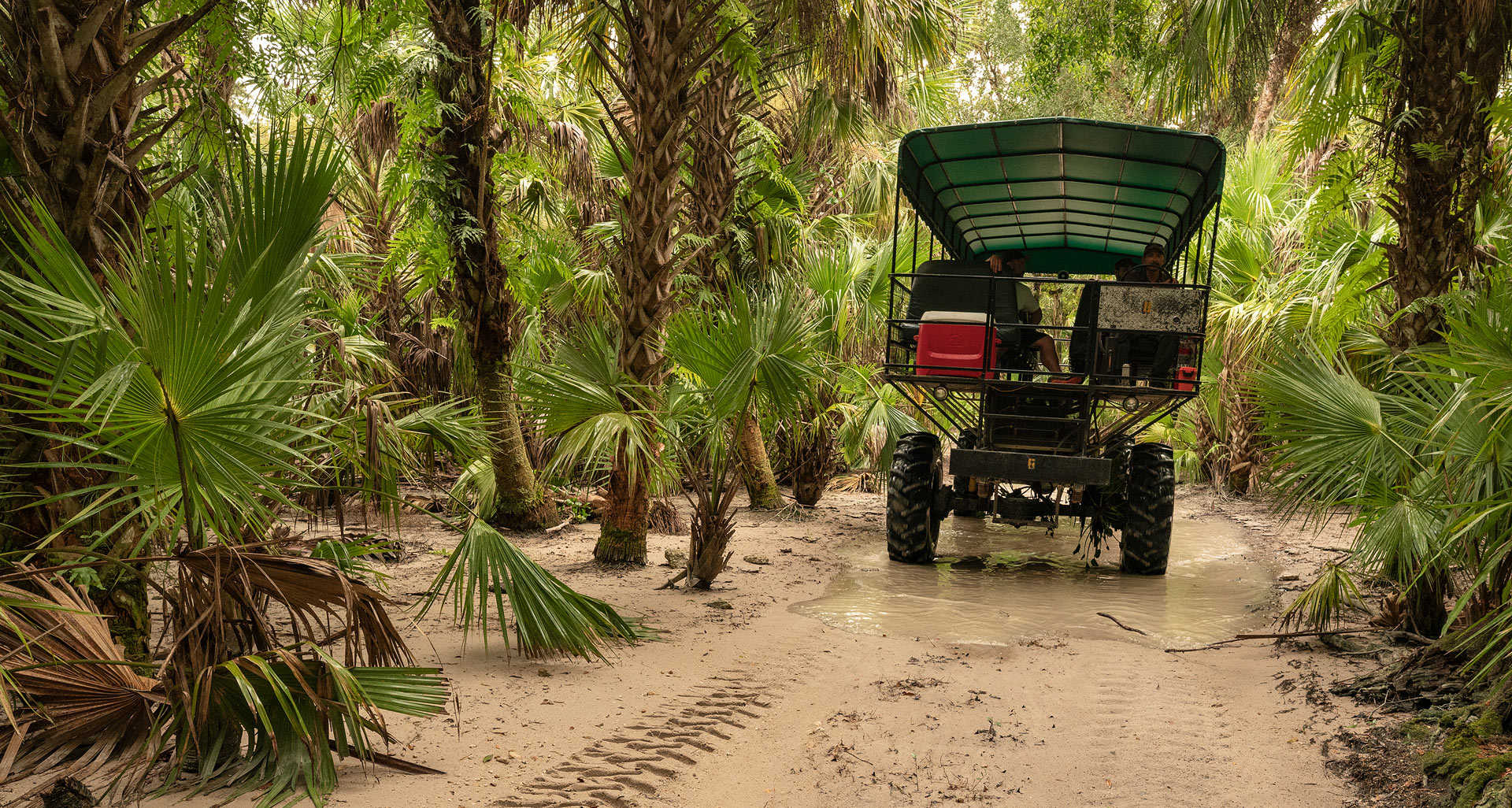 Florida Seminole Tourism - Billie Swamp Safari - Adventure Rides