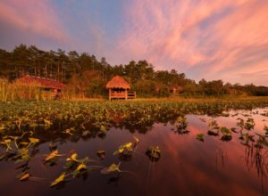 Florida Seminole Tourism